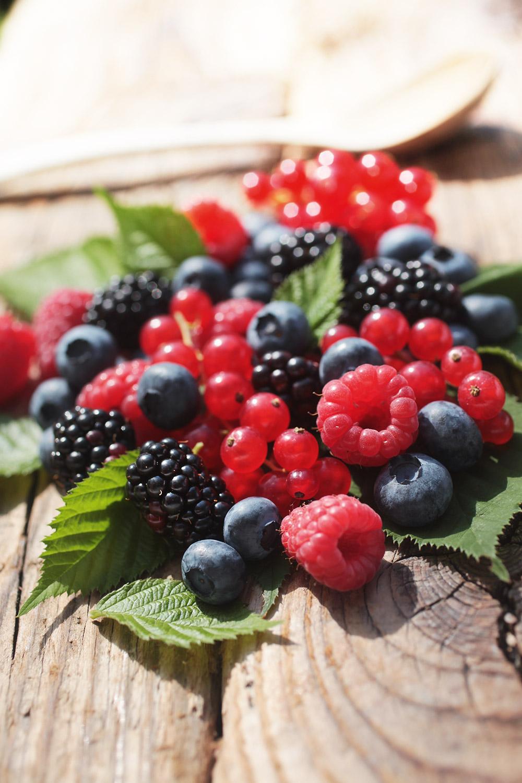 Frutti di bosco surgelati produzione