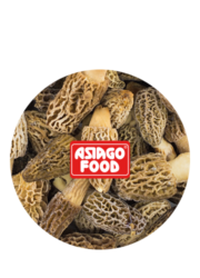 Morchella conica - Asiago Food